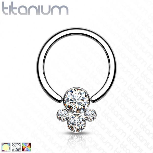 Titan Captive Bead Ring Bezel Zirkonia Pfote Ball CBR Ring Helix Tragus Orbital